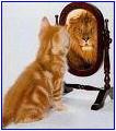 confiance en soi image